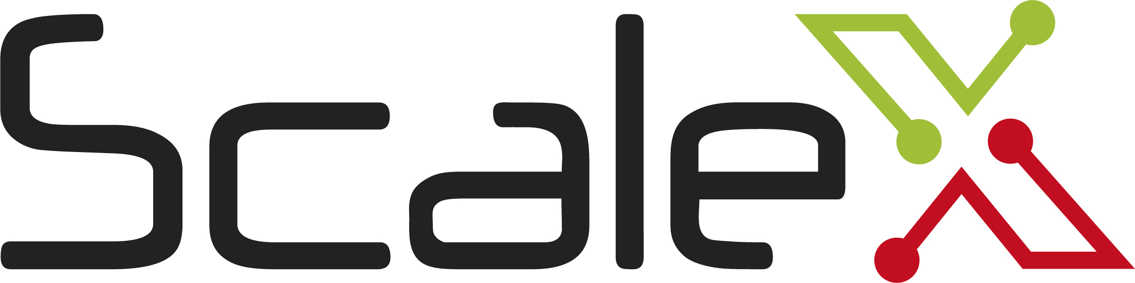 ScaleX Technologie